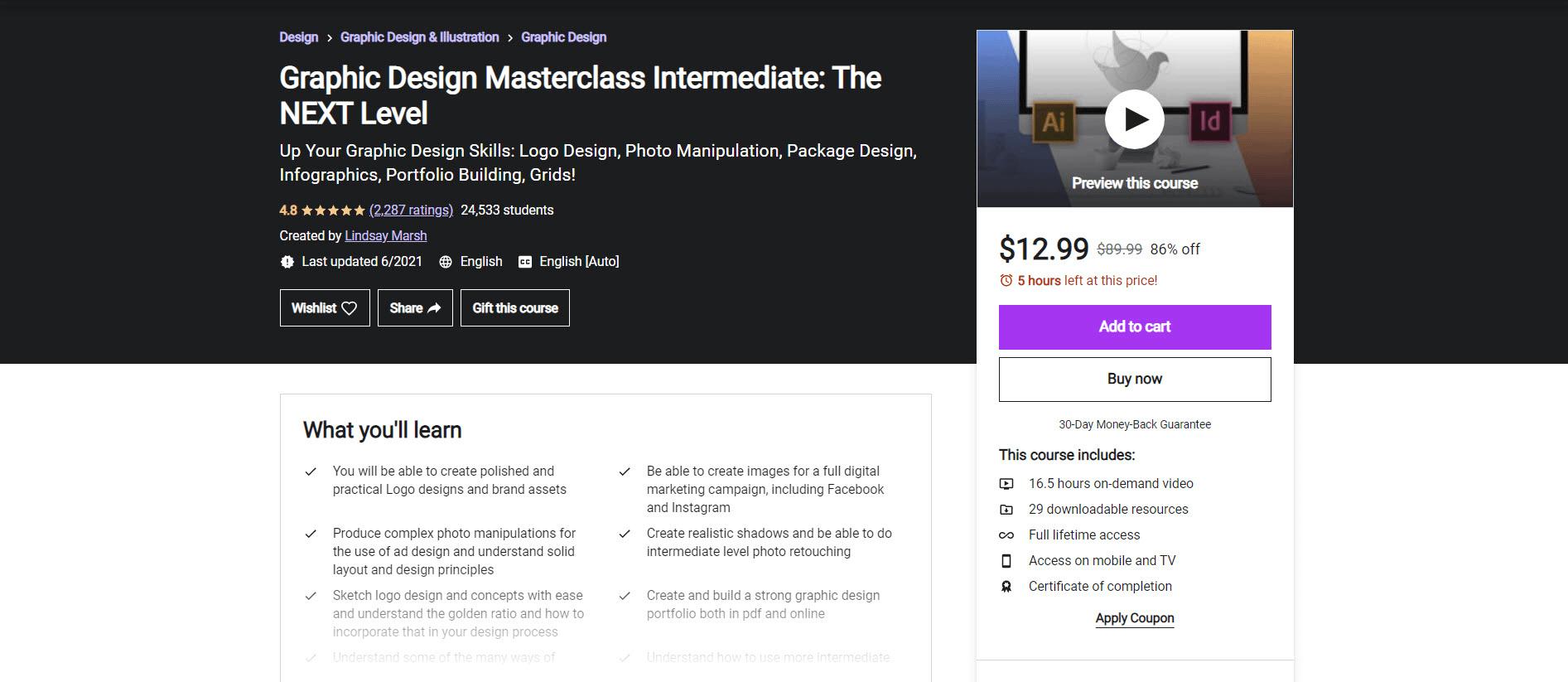 udemy masterclass intermediate