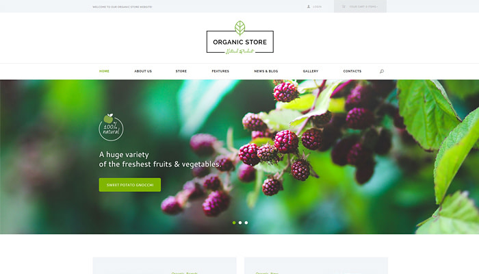 organic store organic food eco products themeef