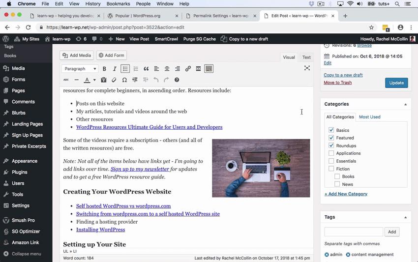 WordPress SEO page